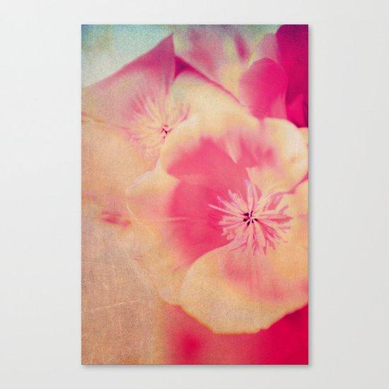 Poppies(delicate) Canvas Print