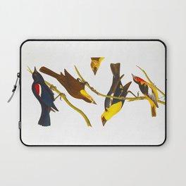 Nuttall's Starling, Yellow-headed Troopial, Bullock's Oriole Laptop Sleeve