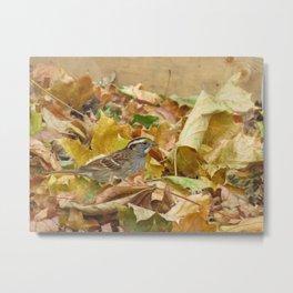 Sparrow Camouflage Metal Print