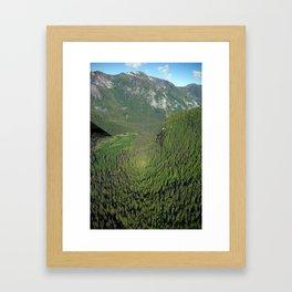 Another Kind of Rainforest Framed Art Print