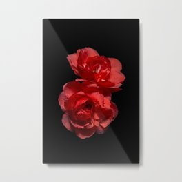 Blood Red Camelia Metal Print