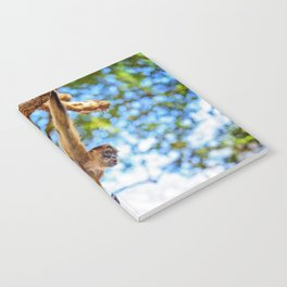 Just Hanging Around Notebook