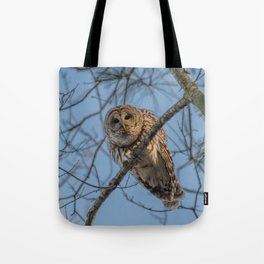 End of day Barred Owl Tote Bag
