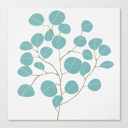 Eucalyptus No. 1 Canvas Print