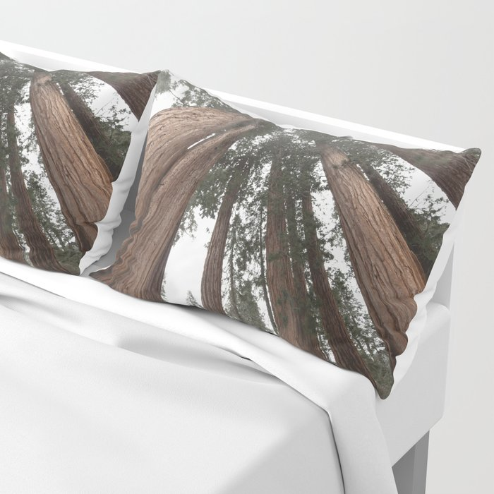 Sky Climbers - Sequoia Pillow Sham