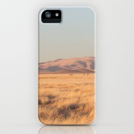 Home on the Range II iPhone Case