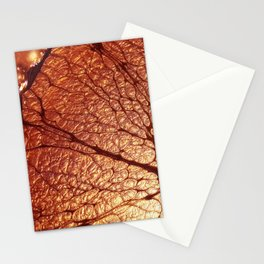 CooperCola Stationery Cards
