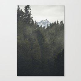 British Columbia Trees Canvas Print