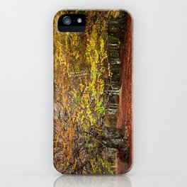 Colorful autumnal forest iPhone Case