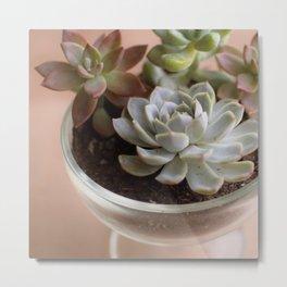 Happy Little Succulents Metal Print