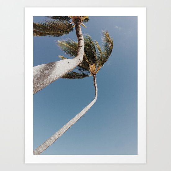 Crooked Palm Trees Art Print