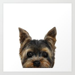 Yorkshire Terrier Mix colorDog illustration original painting print Art Print