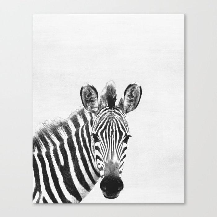 Zebra peekaboo print canvas print