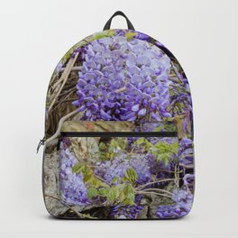 Beautiful Wisteria in bloom at garden in Tuscany, Italy Backpack