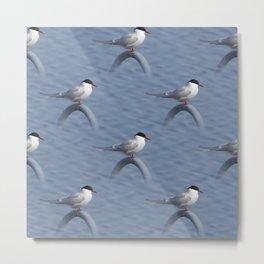 Pattern of common terns Metal Print