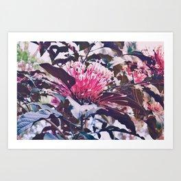 Garden Flower Art Print