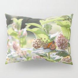 Butterflies in the Garden Pillow Sham