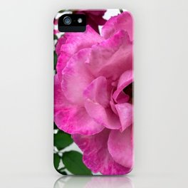 Bodacious Pink Rose | Large Pink Flower | Nature Photography iPhone Case