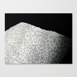 moon texture - Sec.1.23.456 Canvas Print