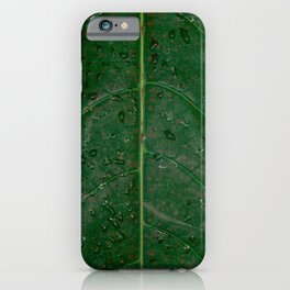 Botanical leaf with rain drops | Tropical travel photography | Nature art print iPhone Case
