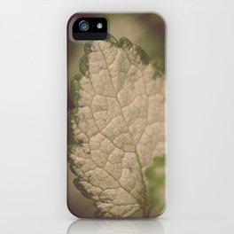 Leaf Macro iPhone Case