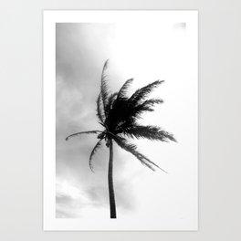 Palm Tree Noir #5 Art Print