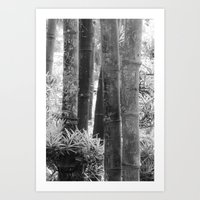 Carvings on the Bamboo Art Print