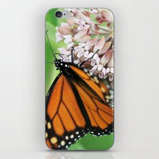Monarch Butterfly iPhone & iPod Skin