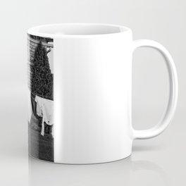 Amish Laundry Coffee Mug