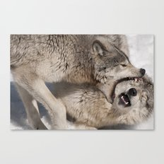 Acupuncture - Timber Wolves Canvas Print