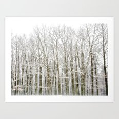 Winter Woodlands Art Print