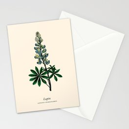 Lupin Vintage Botanical Print Stationery Cards