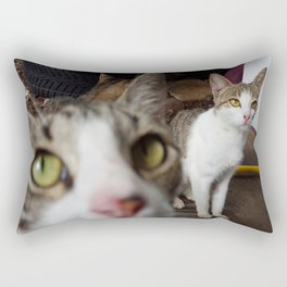 Back Yard Kitties  Rectangular Pillow