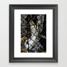 Swing, Swing Framed Art Print