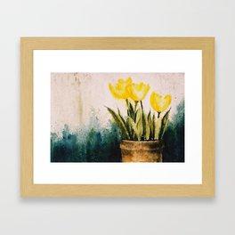 Tulipes Framed Art Print