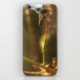 bulb iPhone Skin