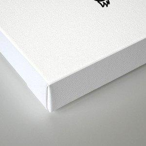 Wizz Canvas Print