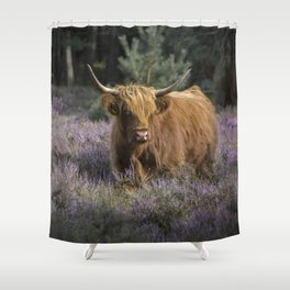 Red highland cow in purple field Shower Curtain