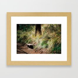 the solitary seat Framed Art Print