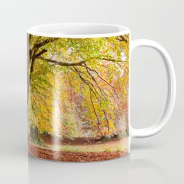 Colorful autumn in the woods of Canfaito park, Italy Coffee Mug