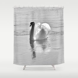 white swan Shower Curtain