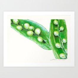 Watercolor Peas Art Print