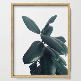 Ficus Elastica #16 #White #decor #art #society6 Serving Tray