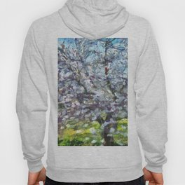 Almond Blossom Hoody