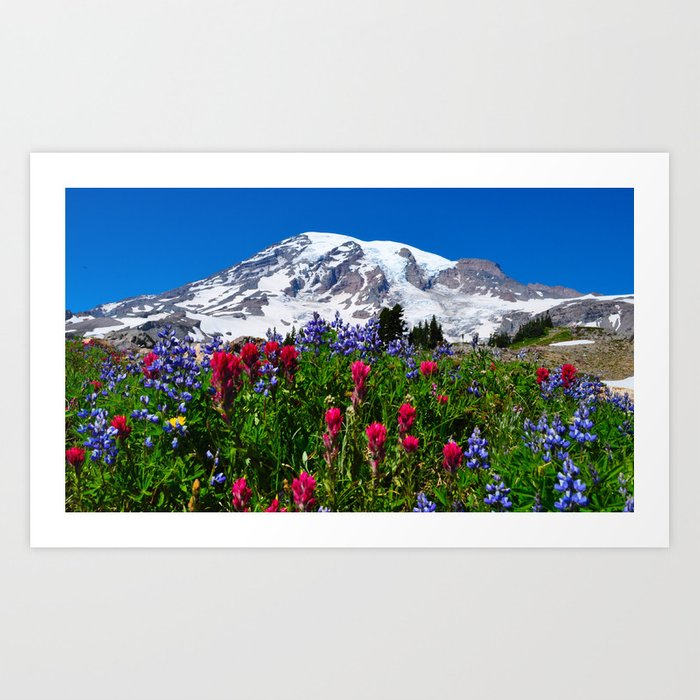 Mt. Rainier Skyline Trail, Mt. Rainier National Park Kunstdrucke