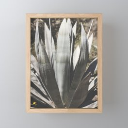 aloe Framed Mini Art Print