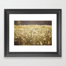 Spinning daisies Framed Art Print