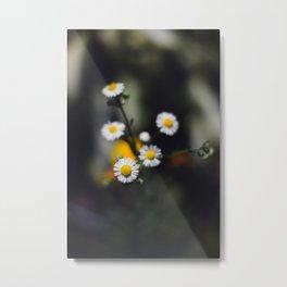 Backyard Flowers (5) Metal Print