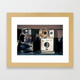 The Pixie Framed Art Print