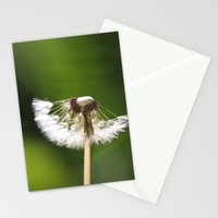 My Interrupted Wish Stationery Cards